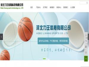 河北力王体育科技有限公司
